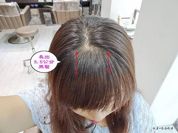 長出3.5公分黑髮2018.7 (1).jpg