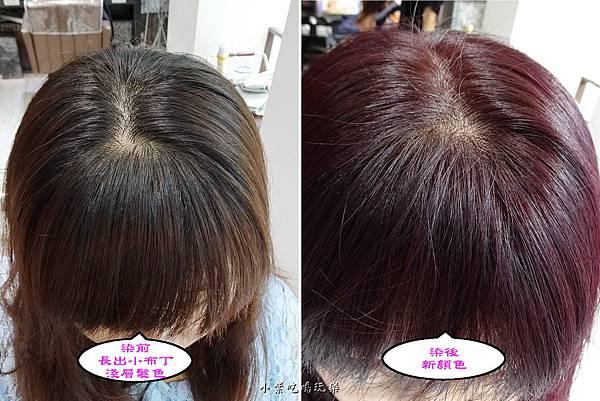 染髮前與後.jpg