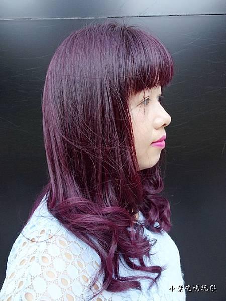 薰衣草紫+紫羅蘭 (1).jpg