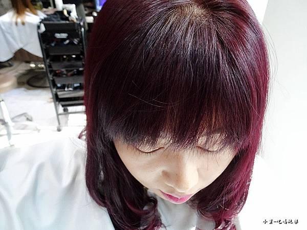 薰衣草紫+紫羅蘭 (4).jpg