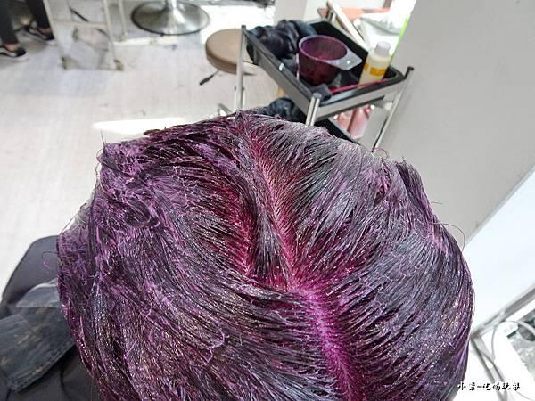 薰衣草紫+紫蘿蘭 (16)0.jpg