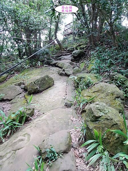 往鳶山頂捷徑步道 (1).jpg