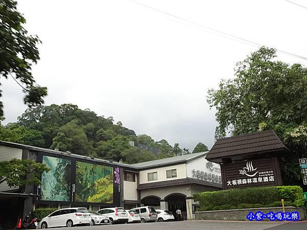 大板根森林溫泉酒店 (2).jpg