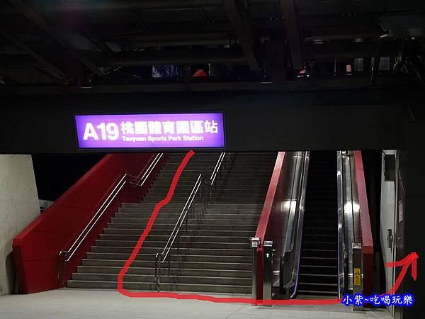 A19桃園體育園區站 (2).jpg