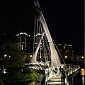 青塘園-斜張橋 (3).jpg