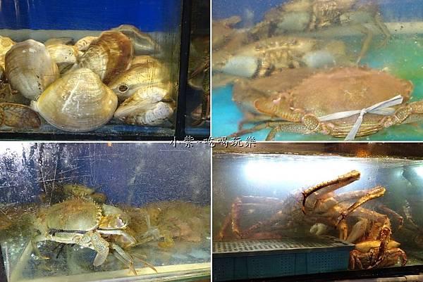 蛤蟹.jpg