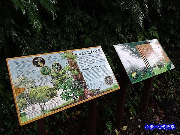 烏紗溪瀑布-內洞森林遊樂區 (4).jpg