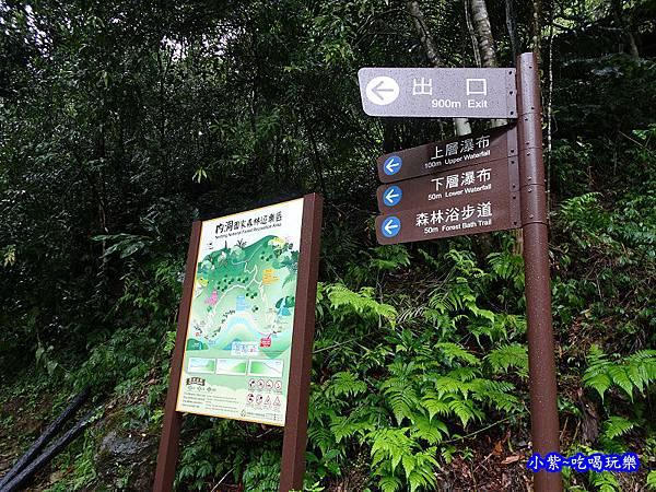 烏紗溪瀑布-內洞森林遊樂區 (17).jpg