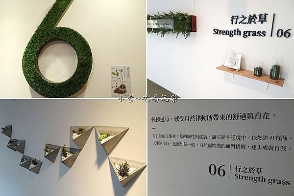6樓行之於草-綠宿行旅.jpg