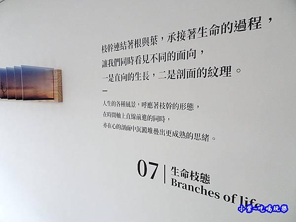 7樓生命枝態-綠宿行旅 (1).jpg