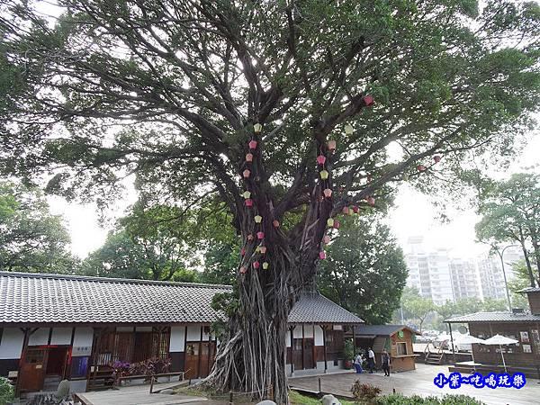 生命之樹 (1).jpg