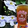 梅子綠茶-太空紅茶冰.jpg