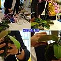 IKEA宜家家居花藝DIY (2).jpg