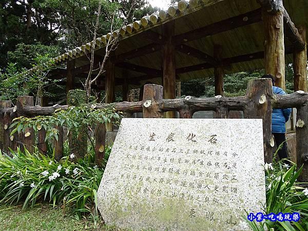 生痕化石區 (5).jpg