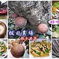 楓田農場-首圖.jpg