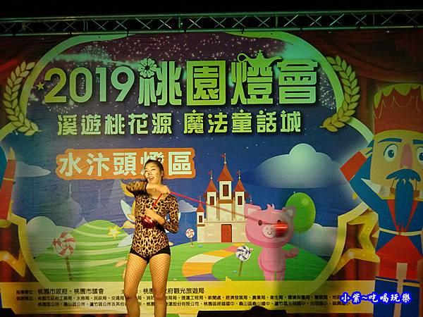 2019桃園燈會-水汴頭燈區 (16).jpg