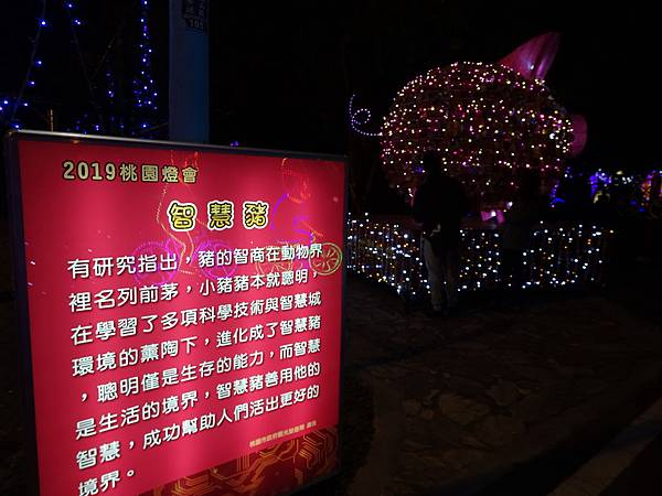 2019桃園燈會-龜山燈區 (4).JPG