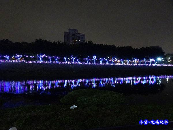 2019桃園燈會-龜山燈區 (9).jpg