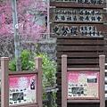 春陽部落-天主教示範公墓 (4).JPG