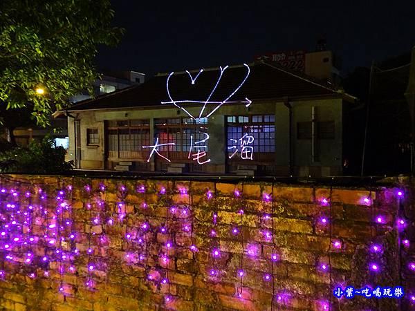 屏東燈會-勝利星村燈區2019.2月   (44).jpg