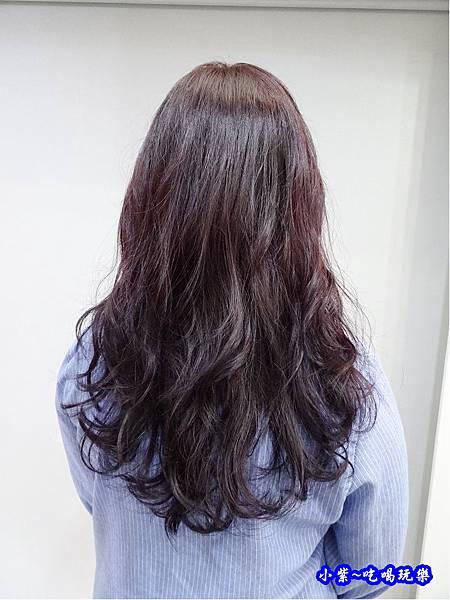 尚洋髮藝成都店50.jpg