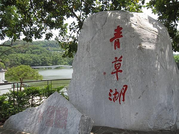 青草湖 (7).JPG