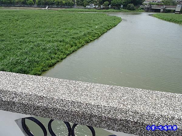 新竹-青草湖 (1).jpg