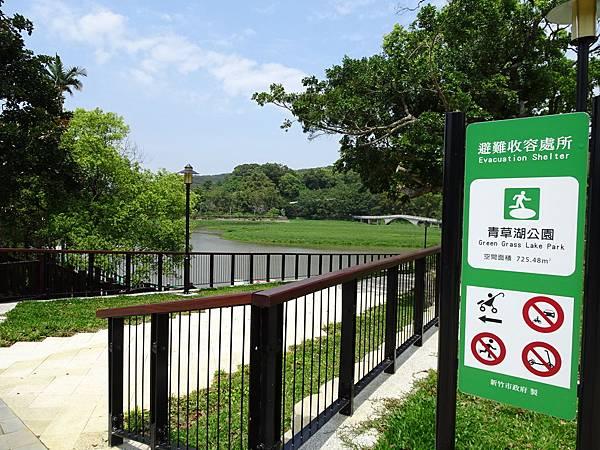 新竹-青草湖 (4).JPG