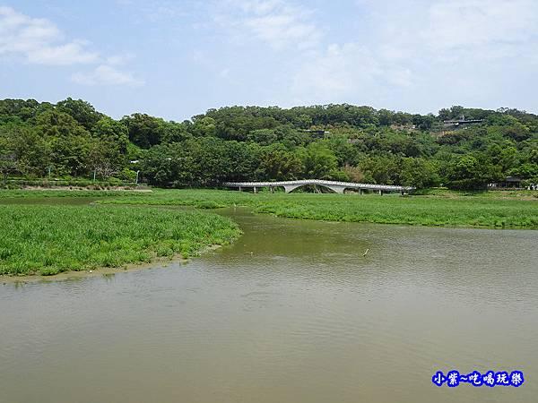 新竹-青草湖 (5).jpg