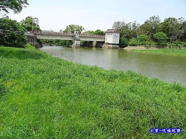 新竹-青草湖 (7).jpg