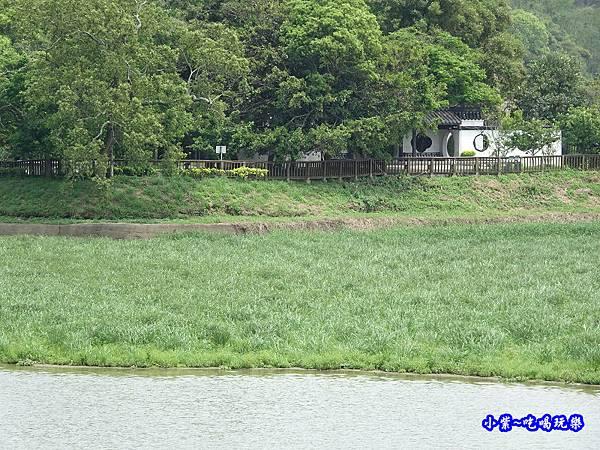 新竹-青草湖 (9).jpg
