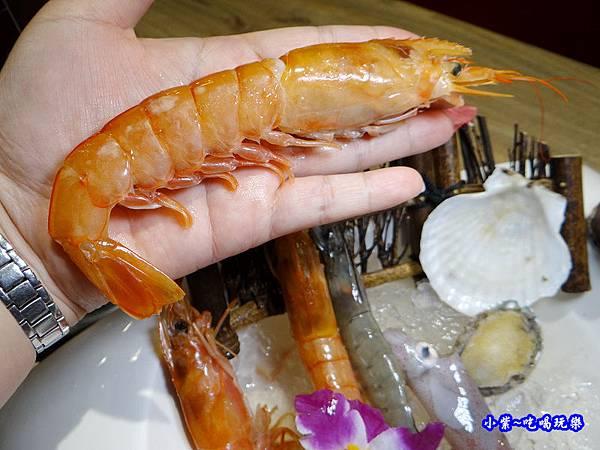 天使紅蝦-澤鍋物.jpg