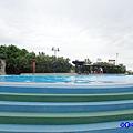 大泳池-大安濱海樂園  (3).jpg