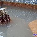 淺水大眾池-蘇澳冷泉 (7).jpg