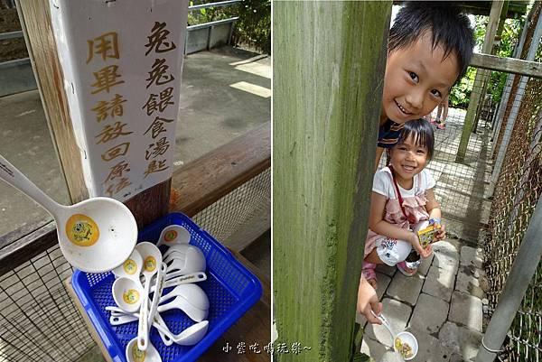 棗莊-小動物的家 (1).jpg