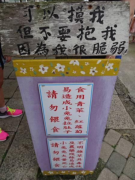 棗莊-小動物的家 (7).JPG
