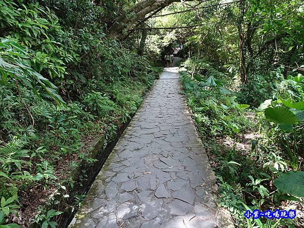 宜蘭-猴洞坑瀑布2019-8月 (18).jpg