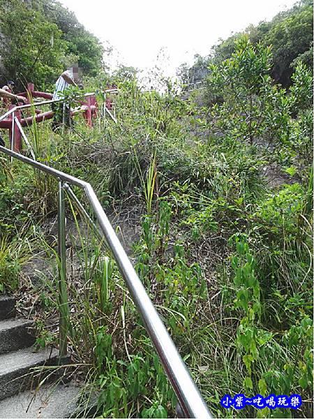 宜蘭-猴洞坑瀑布2019-8月 (23).jpg