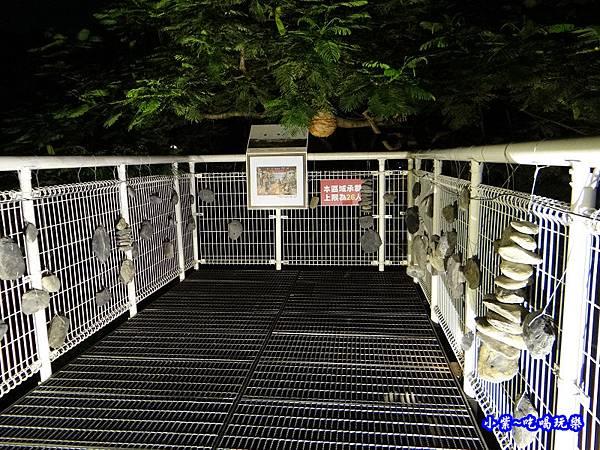 八卦山2019-8月天空步道 (35).jpg