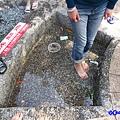 谷關溫泉公園洗腳池 (1).jpg
