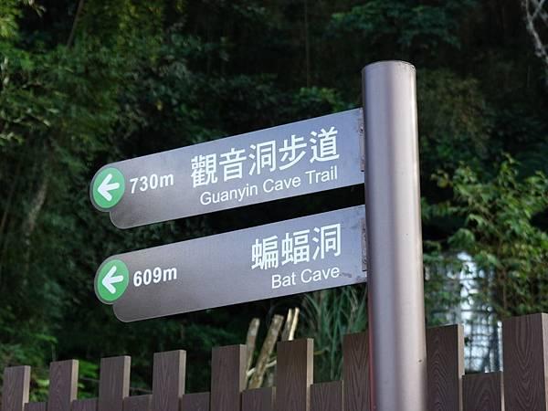 北橫蝙蝠洞步道-入口 (2).JPG