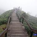 大崙山瞭望平台9.jpg