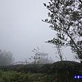 大崙山瞭望平台4.jpg