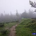 大崙山瞭望平台3.jpg