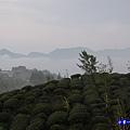 大崙山瞭望平台21.jpg