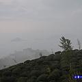 大崙山瞭望平台18.jpg