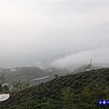 大崙山瞭望平台15.jpg