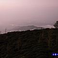 大崙山瞭望平台25.jpg
