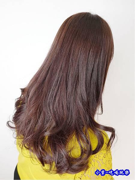 2019fin hair1018染髮 (8).jpg