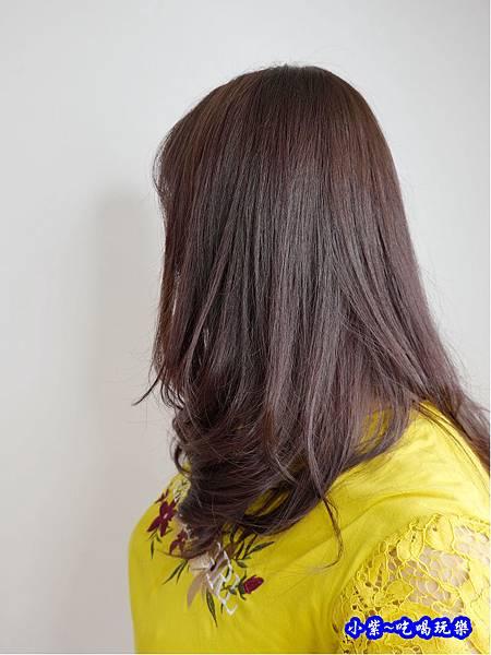 2019fin hair1018染髮 (12).jpg